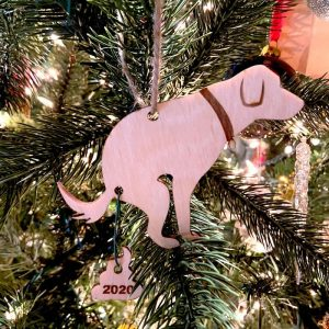 Dog Poop 2020 Ornament